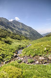 Creek in the amazing green mountain valley Royalty Free Stock Photography