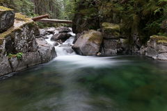 Free Creek And Forest Pool Royalty Free Stock Photos - 78855138