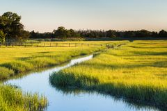 Creek And Marshy Field Royalty Free Stock Photography
