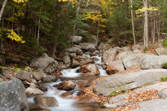 Creek in autumn Stock Images