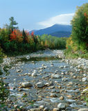 Creek with autumn trees and Mt. Washington, NH Royalty Free Stock Photos