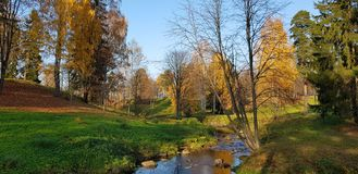 Creek and autumn trees. With reflection royalty free stock photos