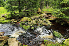Creek in the beautiful Wilderness, the summer Mountains Sumava in southern Czech Stock Image