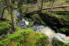 Creek in the beautiful Wilderness, the summer Mountains Sumava in southern Czech Royalty Free Stock Photography