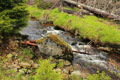 Creek in the beautiful Wilderness, the summer Mountains Sumava in southern Czech Royalty Free Stock Photo