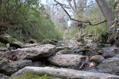 Creek. Bed in Weatherford Texas near Holland Lake Park Royalty Free Stock Image