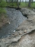 Creek bed in the woods Royalty Free Stock Photography