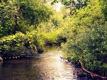 The Creek. By the bridge Stock Images