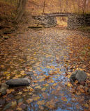 Creek with bridge and autumn fall leaves Stock Image