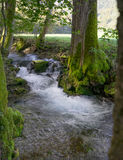 Creek Bruehlbach near Bad Urach, Germany Stock Image