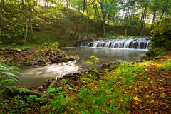 Creek cascades in Polish forest stock photos