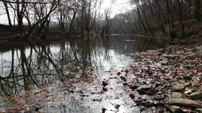 A creek in Central Kentucky in late fall stock video footage