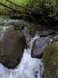 Creek cleaned stones stock photo