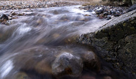 Creek close-up Royalty Free Stock Photos