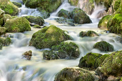 Creek closeup in a forest Royalty Free Stock Photography