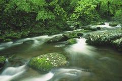 creek cosby Zdjęcia Stock