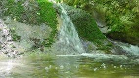 Creek in Crimea stock video footage