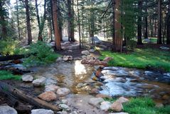Creek Crossing stock image