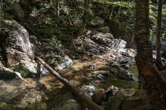 A creek in the Shenandoah National Park stock photo