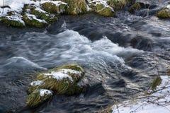 Creek Stock Photography