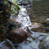 Creek Stock Photos
