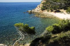 Creek of Engraviers on mediterranean sea. And swimmers, on Bandol, French riviera, France Royalty Free Stock Photos