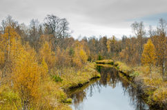 Creek in the fall Royalty Free Stock Image