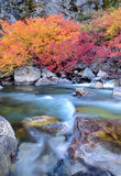 Creek in Fall Glory Royalty Free Stock Photography