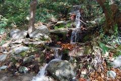 Creek fall in Greece. Waterfall in the thermal spring Aridea, Greece royalty free stock image