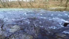 Creek in fall stock video