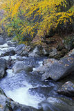Creek in the Fall. Shinny Creek at South Mountains State Park stock photos