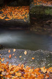 Creek with Fallen Autumn Leaves on Boulders Stock Photo