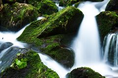 Creek, Falls, Flow, Flowing, Forest Stock Photos