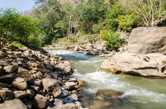 Creek flowing through along rocks Royalty Free Stock Photos