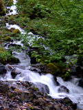 Creek flowing down hillside near Multnomah Falls Royalty Free Stock Photos