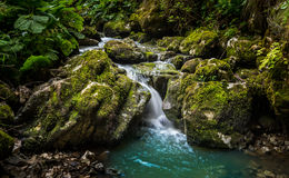 Creek Flowing Royalty Free Stock Photography