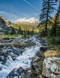 Creek Flowing in the Mountains Stock Photography