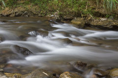 Creek flowing Royalty Free Stock Photo