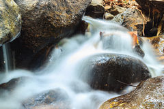 Creek flowing over the rocks Stock Images
