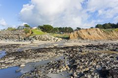 Creek flowing in to the Pacific Ocean at low tide, Moss Beach, Fitzgerald Marine Reserve, California royalty free stock images