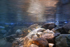Creek in the forest. A tranquil mountain creek at sunset - Underwater shot Royalty Free Stock Images