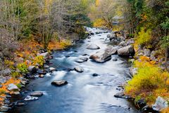 Creek in the forest in autumn royalty free stock images