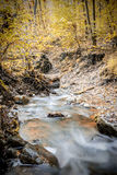 Creek in forest in autumn Stock Photo