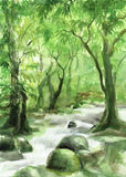 Creek in the forest. Watercolor painting of green forest with a creek by Veronika Surovtseva stock illustration