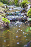 Creek with fresh water flowing Royalty Free Stock Image