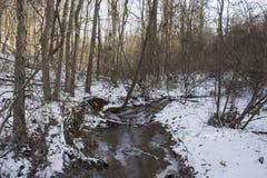 Creek in frozen winter landscape royalty free stock photo