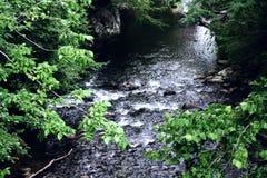 Creek in Gatlinburg. View of creek in Gatlinburg, Tennessee Stock Image