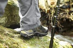 Creek Hiking Royalty Free Stock Photography