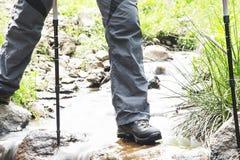 Creek Hiking Stock Images