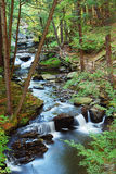 Creek with hiking trails Stock Photography